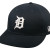 Detroit Tigers Home
